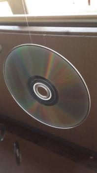 多目的CD